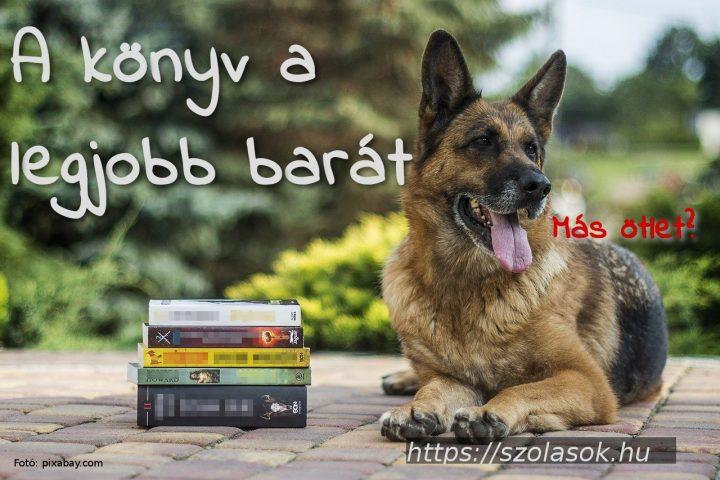 A könyv a legjobb barát