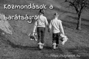 Közmondások a barátságról: Madarat tolláról...