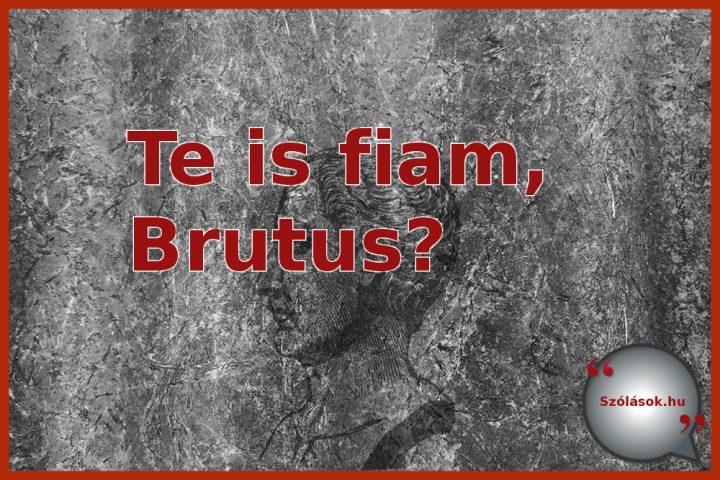 Caesar: Te is fiam, Brutus?