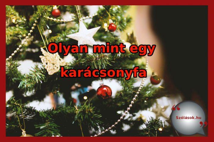 Vajon mit jelent, mi a magyarázata? Olyan mint egy karácsonyfa. Ismerd meg a bölcs mondás jelentését!