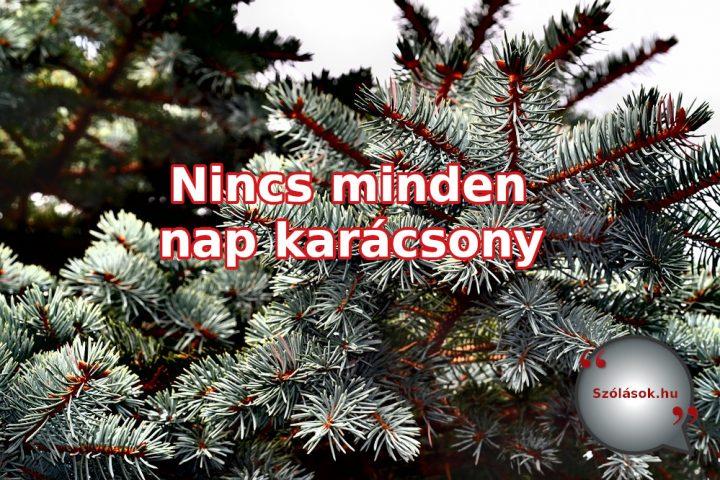 Nincs minden nap karácsony