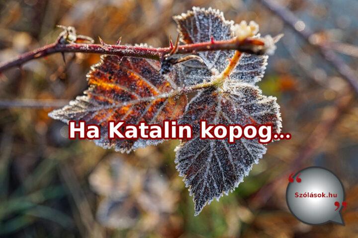 Ha Katalin kopog, karácsony locsog