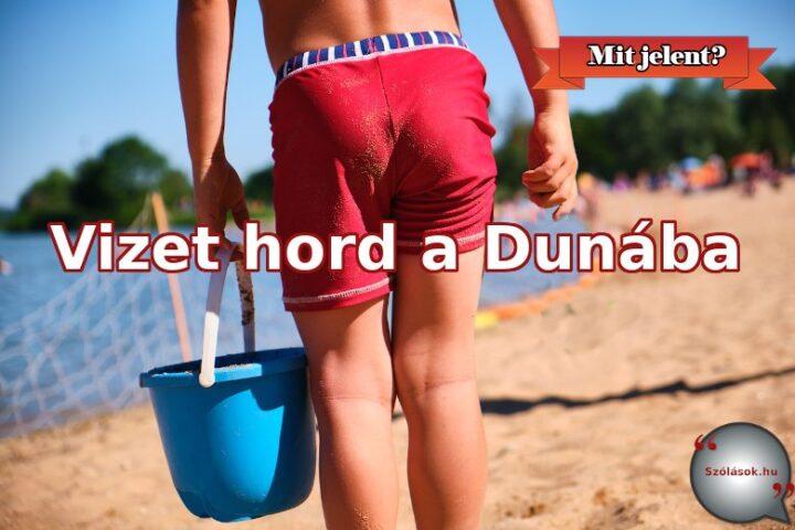 Vizet hord a Dunába jelentése